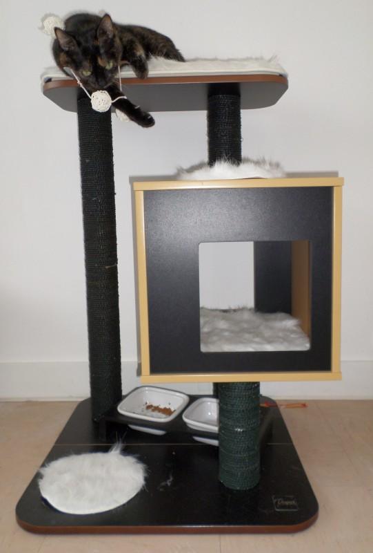 arbre a chat a gamm vert. Black Bedroom Furniture Sets. Home Design Ideas