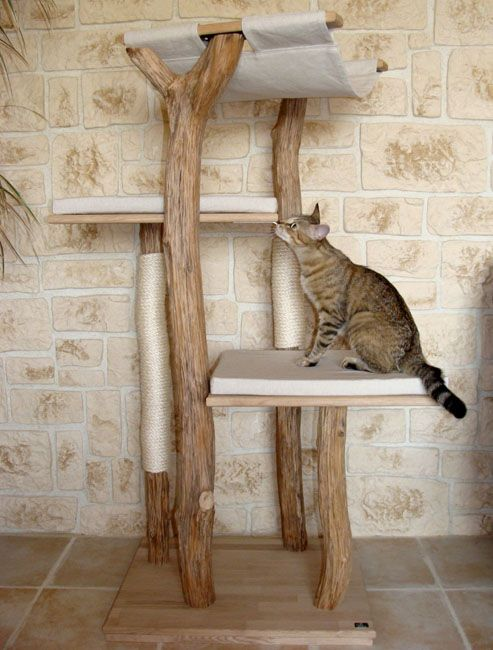 Arbre a chat bois naturel - Arbre a chat en bois naturel ...