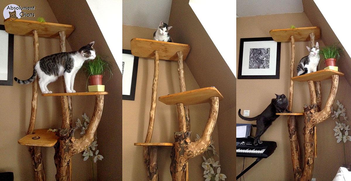 arbre a chat ecologique. Black Bedroom Furniture Sets. Home Design Ideas