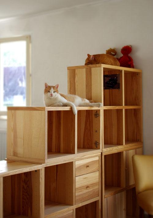 arbre a chat etagere. Black Bedroom Furniture Sets. Home Design Ideas