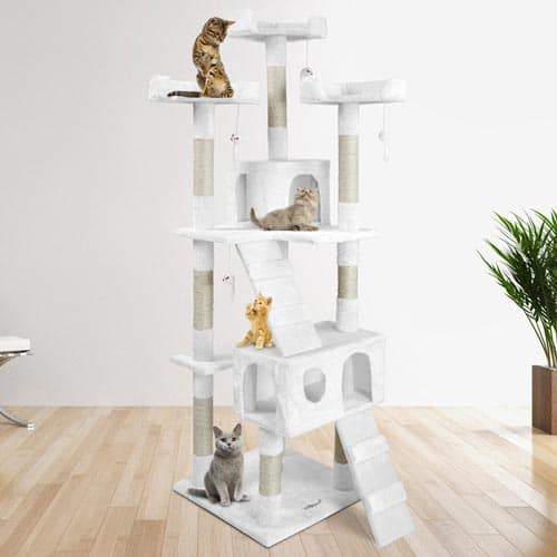 arbre a chat geant design