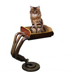 arbre a chat haut de gamme. Black Bedroom Furniture Sets. Home Design Ideas