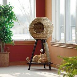 arbre a chat joli. Black Bedroom Furniture Sets. Home Design Ideas