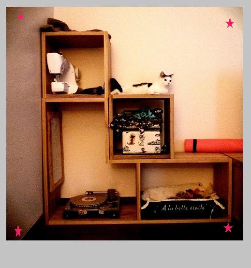 arbre a chat pas cher allemagne. Black Bedroom Furniture Sets. Home Design Ideas
