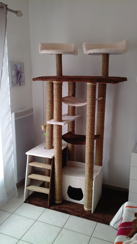 arbre a chat palette. Black Bedroom Furniture Sets. Home Design Ideas
