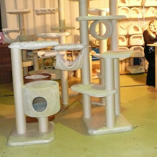 arbre a chat pas cher maxi zoo. Black Bedroom Furniture Sets. Home Design Ideas