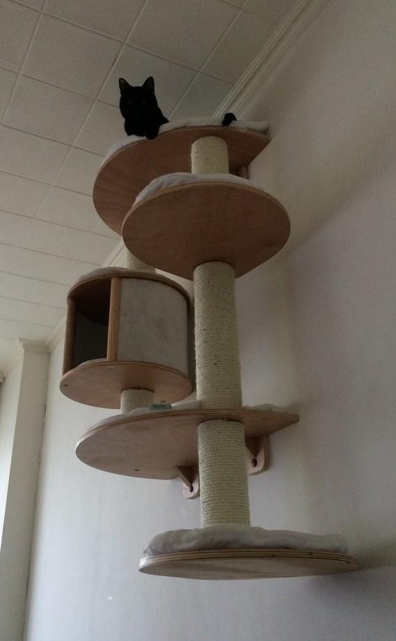 Arbre a chat pas cher maxi zoo - Tuto arbre a chat ...