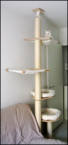 arbre a chat pet fun pas cher