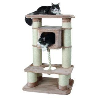 arbre a chat solide pour maine coon. Black Bedroom Furniture Sets. Home Design Ideas