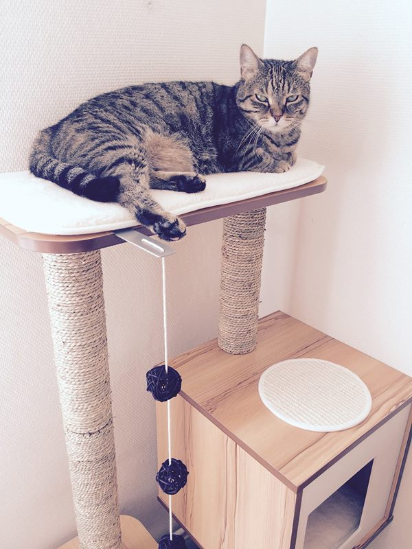 arbre a chat vesper double