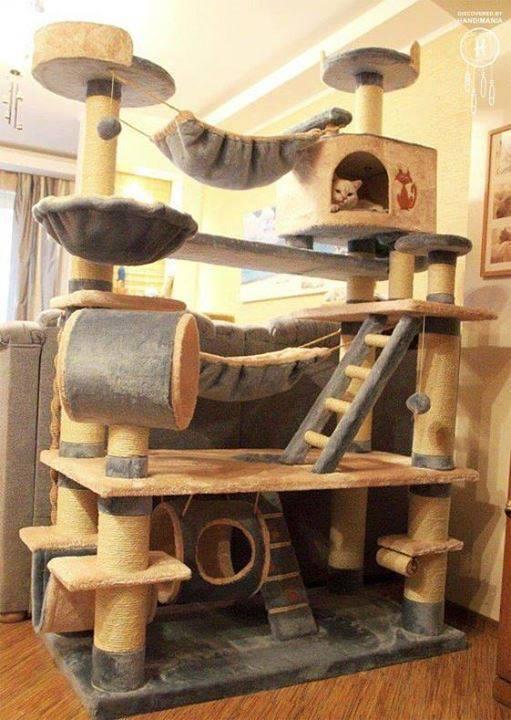 arbre chat xxl